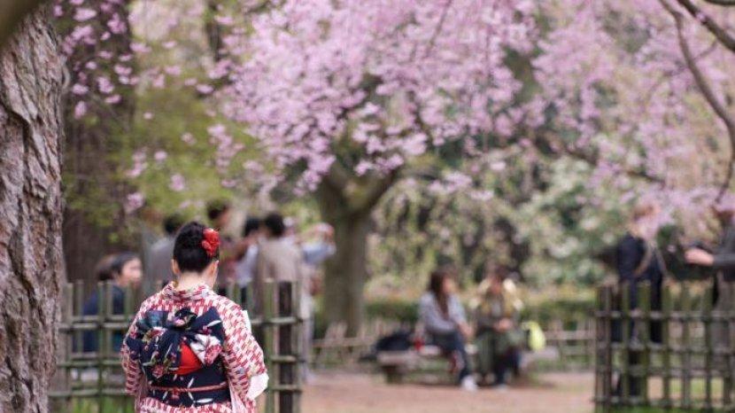Ini 10 Fakta Unik Kehidupan di Jepang, Negara yang Memiliki Tingkat Kejahatan Terendah