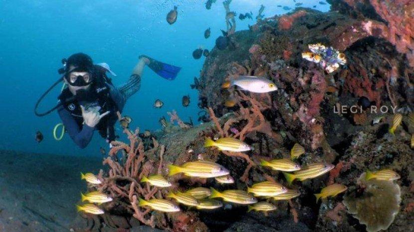 4 Tempat Wisata Populer di Manado, Bisa Snorkeling di Pantai Malalayang