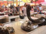 daging-ular-di-pasar-ekstrem-tomohon.jpg
