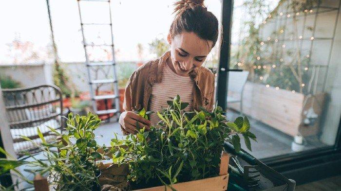 Hilangkan Stres dan Tingkatkan Mood dengan Berkebun dan Memasak