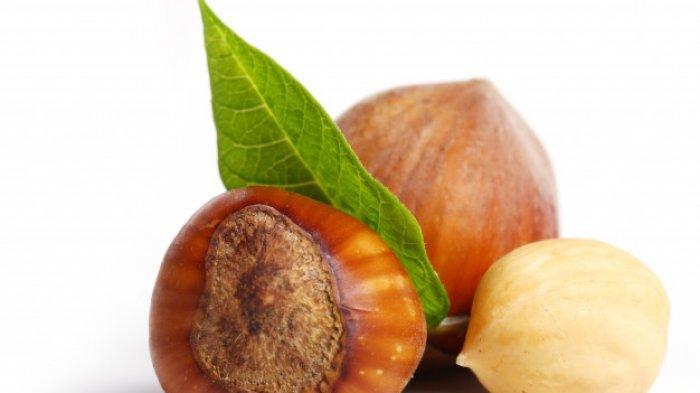 Kandungan Gizi Hazelnut, Kacang Manis Kesukaan Banyak Orang
