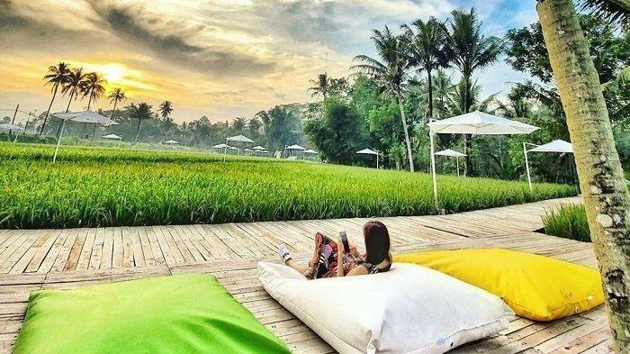 Miliki 22 Spot Instagramable, Seperti Apa Nuansa Svargabumi Borobudur di Magelang?