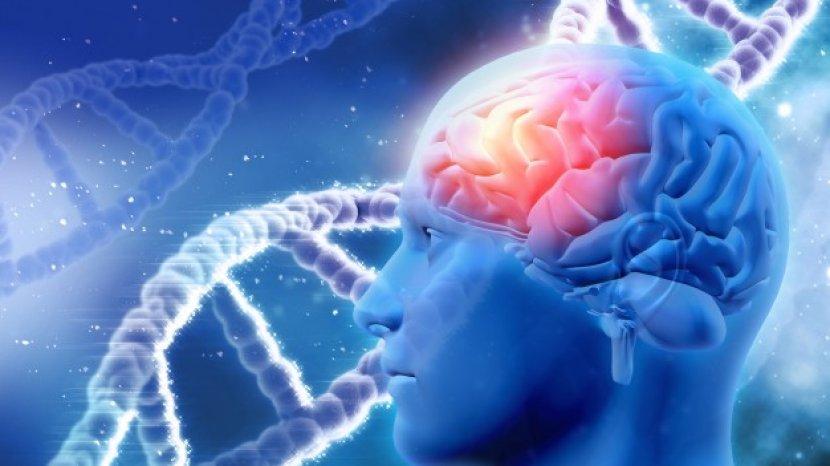 Gangguan Memori, Penyakit yang Bisa Sebabkan Demensia hingga Alzheimer