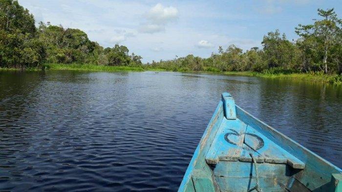 Rawa Singkil Disebut Pesona Wisata Amazon Kedua di Indonesia - pesona-keindahan-rawa-singkil.jpg
