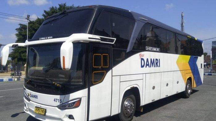 Bus-Damri-rute-Ponorogo-Surabaya.jpg