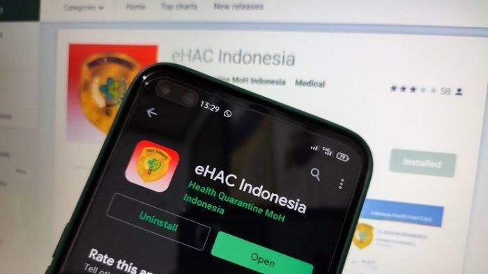 Ilustrasi aplikasi e-HAC versi lama