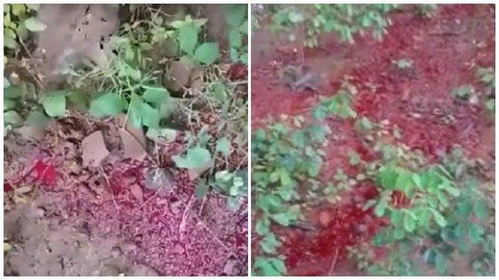 geger-cairan-merah-mirip-darah-mengalir-di-tanah-di-sukoharjo-buat-warga-heboh.jpg