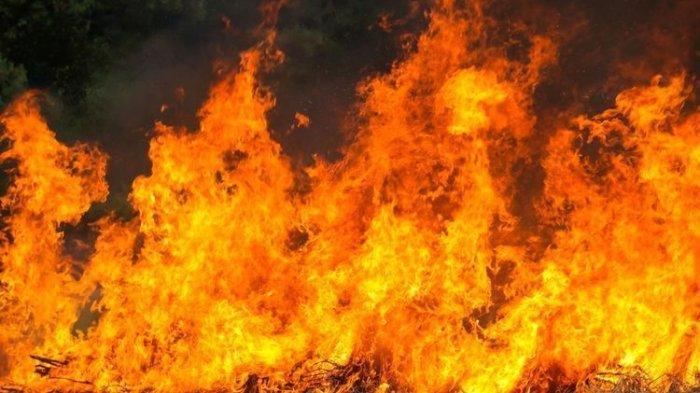 ilustrasi-kebakaran-6.jpg