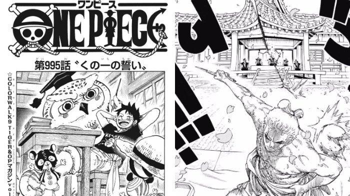 Get One Piece 996 Spoiler PNG