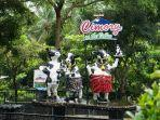 Cimory On The Valley