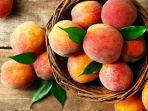 Persik (Peach)