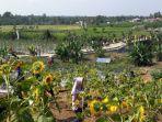 Kabupaten Bengkulu Selatan