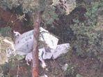 3 Kru Pesawat Kargo Rimbun Air Ditemukan Meninggal Dunia