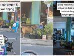 Viral-penjual-gorengan-di-bali-sering-memberi-makan-untuk-anjing.jpg