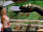 Sinopsis Film Anaconda 3: Offspring, Tayang di Sinema Spesial Liburan TransTV Pukul 14.00 WIB