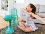 3 Cara Efektif dengan Hasil Jangka Panjang untuk Atasi Rumah Panas