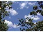 prakiraan-cuaca-33-kota-besar-selasa-26112019.jpg