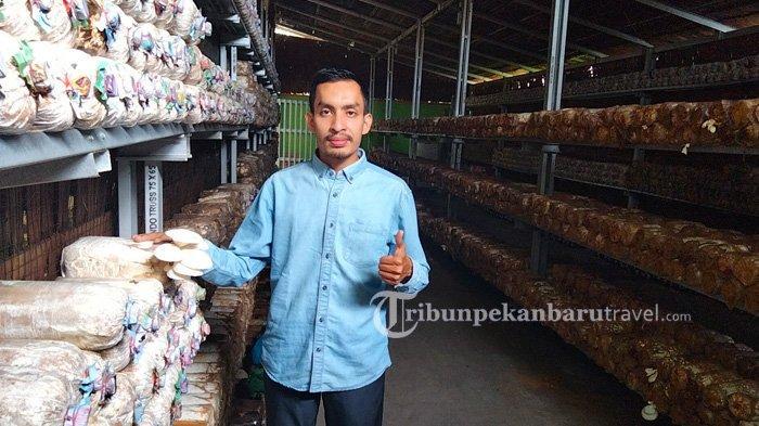 Bayu Fernando, Pemilik tempat Wisata Edukasi Rumah Jamur Nando di Tenayan Raya Pekanbaru.