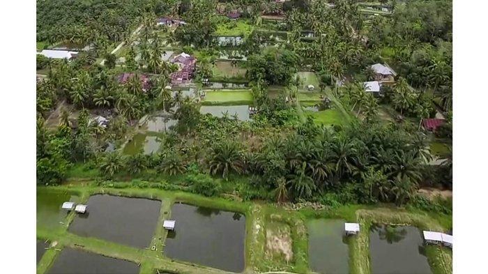Ini Keunggulan Koto Mesjid Kampar yang Masuk dalam 50 Desa Wisata Terbaik Indonesia