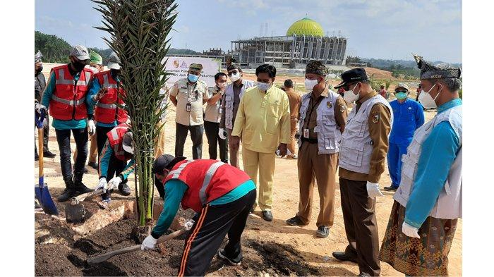 Ratusan Pohon Kurma Bakal Ditanami di Sekitar Areal Islamic Centre Tenayan Raya Pekanbaru