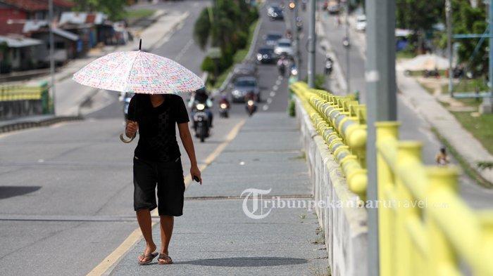 Cuaca Panas di Riau Capai 34 Derajat, Padahal Masuk Musim Hujan, Ini Penjelasan BMKG