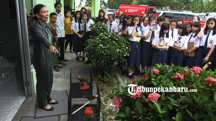 Sampaikan Edukasi Konservasi, BBKSDA Riau Ajak Murid SMP Lihat Berbagai Satwa di Kandang Transit