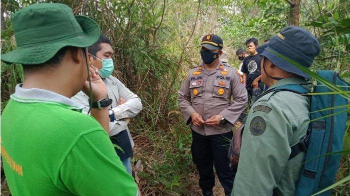 Ada Informasi Harimau Serang Warga di Kerumutan, Polisi & BBKSDA Riau Turun ke Lokasi, Ini Hasilnya