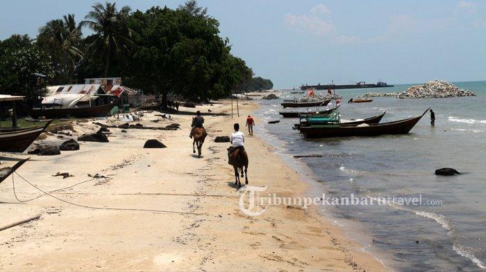 Wisatawan juga bisa menyewa kuda untuk menelusuri Pantai Teluk Rhu Kabupaten Bengkalis
