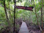 Ekowisata-Mangrove-Sungai-Bersejarah.jpg