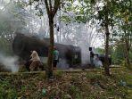 Situs-Lokomotif-Jepang-di-Riau-1.jpg