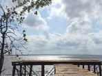 kawasan-Ekowisata-Mangrove-Sungai-Bersejarah-siak.jpg