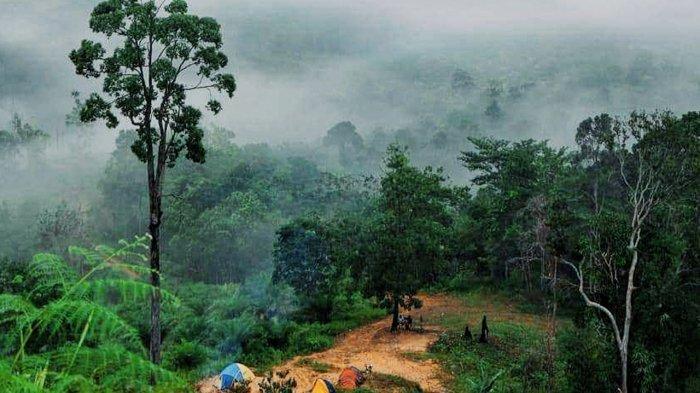 Awan menyelimuti Bukit Condong