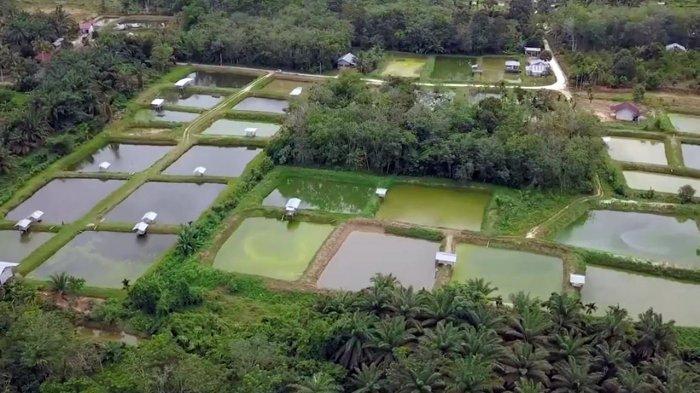 Minggu Besok Menteri Pariwisata Sandiaga Uno Akan Berkunjung ke Desa Koto Masjid, Kampar Riau