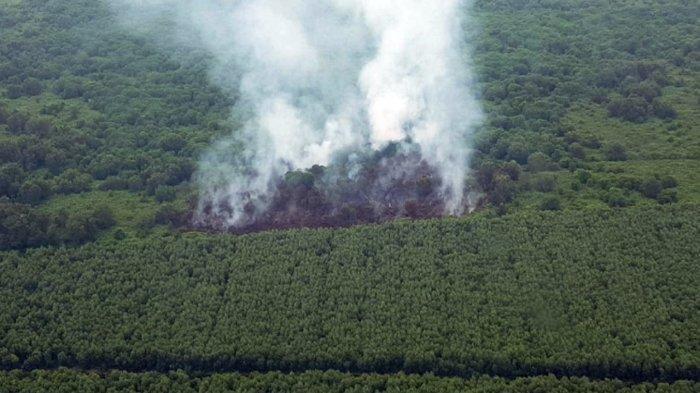 Karhutla Terjadi di Desa Sokoi Kuala Kampar Riau