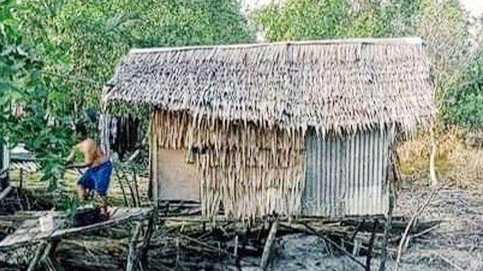 Kondisi gubuk milik Hamar Warga Kabupaten Indragiri Hilir Riau