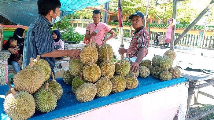 Nikmati Durian Tembaga khas Bengkalis yang Mulai Langka