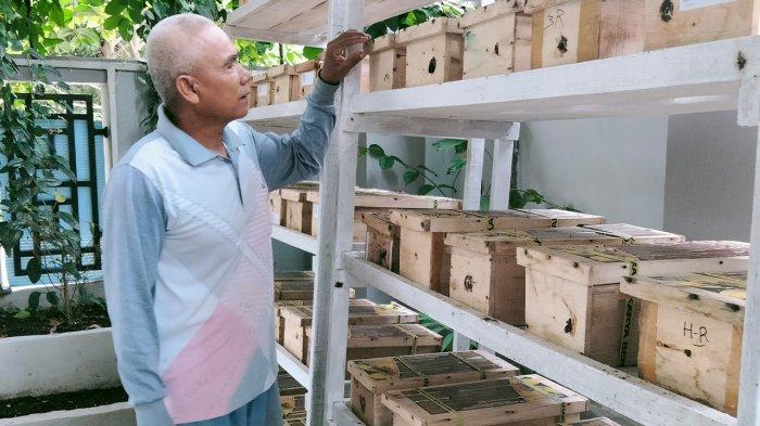 Ruslan Efendi Budidaya Madu Lebah Klanceng di Pekanbaru Riau