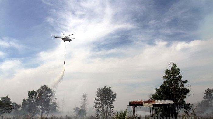 Daftar Luas Lahan Terbakar di Inhil Riau Hingga Mei 2021