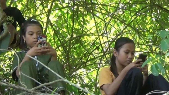Kisah Sutrimo, Warga Riau Panjat Pohon Mencari Signal Telepon Seluler