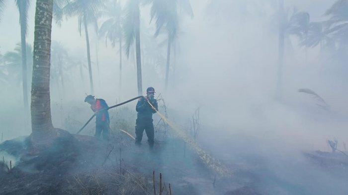 346 Desa di Riau Rawan Karhutla