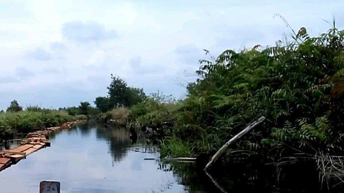 10 Suaka Margasatwa di Riau