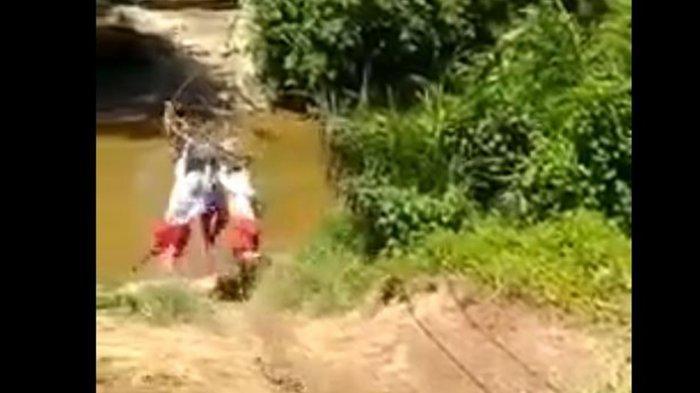 Fakta Video Viral Tiga Anak SD Bergelantungan Menyebrang Sungai di Kampar Riau
