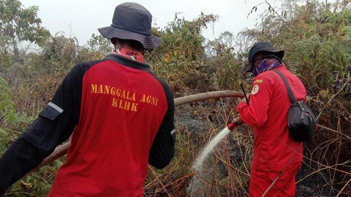 Karhutla di Riau Semakin Meluas, Sudah 382,55 Hektare Terbakar