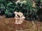 Video-Buaya-Makan-Kambing-Warga-di-Indragiri-Hilir-Riau-Viral.jpg