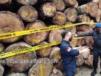 klhk-dan-polda-riau-amankan-ribuan-kayu-hasil-ilegal-logging-dari-suaka-margasatwa-rimbang-baling.jpg