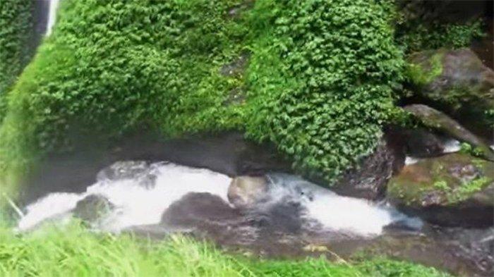 Air Terjun Jodoh terletak di Dusun Pamah Semelir, Desa Telagah, Kecamatan Sei Bingai, Kabupaten Langkat, Sumatera Utara.