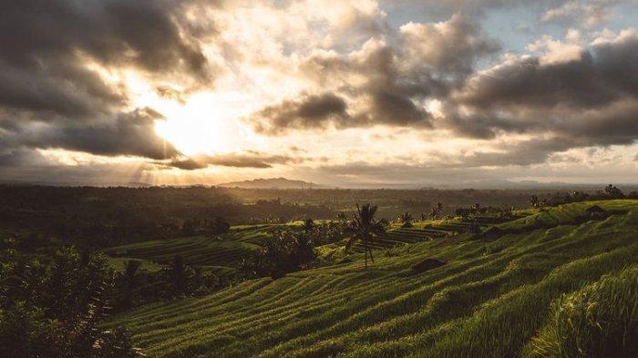 Menarik! 4 Wisata Alam Majalengka yang Asik Pas untuk Liburan