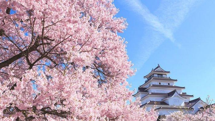 Sebentar Lagi, Jepang Buka Pengajuan Paspor Vaksin Gratis!