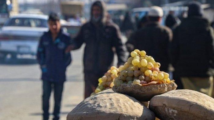 Mengenal Istilah Gangina, Cara Unik Orang Afghanistan Menyimpan Buah Agar Tidak Mudah Busuk
