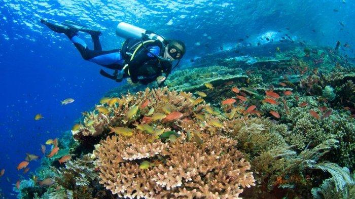 Ini Dia Alasan Nusa Dua Bali Cocok Dijadikan Destinasi Wisata Dimasa Pandemi